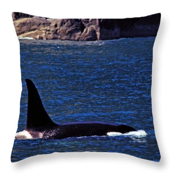 Orca Surfacing Throw Pillow by Thomas R Fletcher