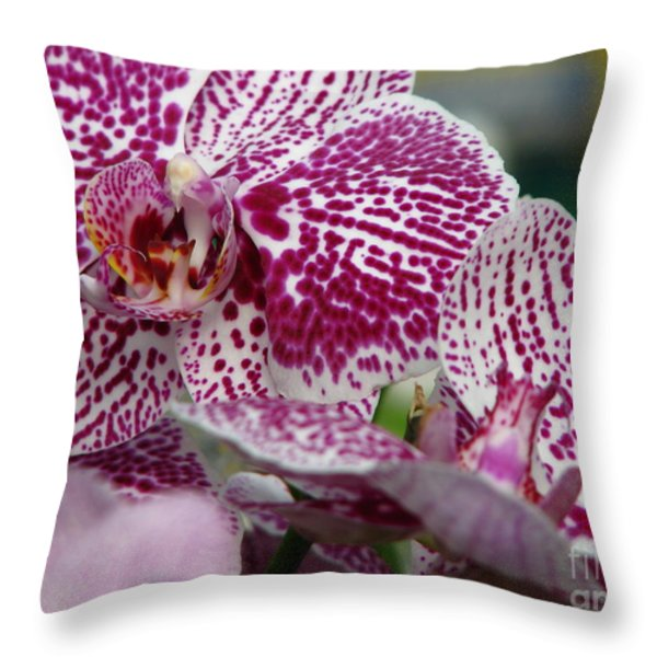 Orchid Art Throw Pillow by Greg Patzer