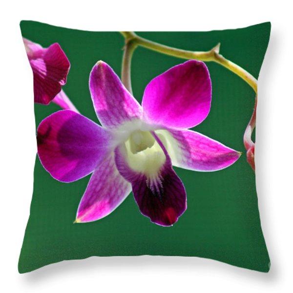 Orchid Flower Throw Pillow by Karen Adams