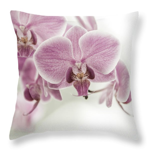 Orchid Pink Vintage Throw Pillow by Hannes Cmarits