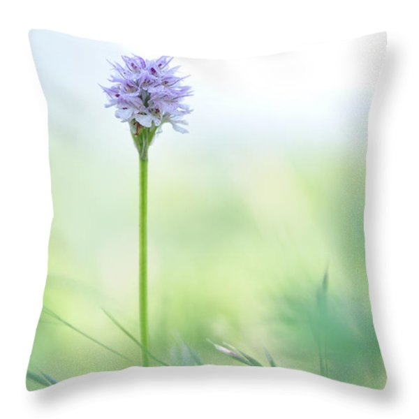 Orchid Throw Pillow by Simona Ghidini