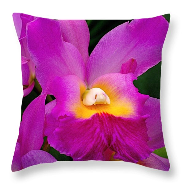 Orchid Variations 1 Throw Pillow by Rona Black