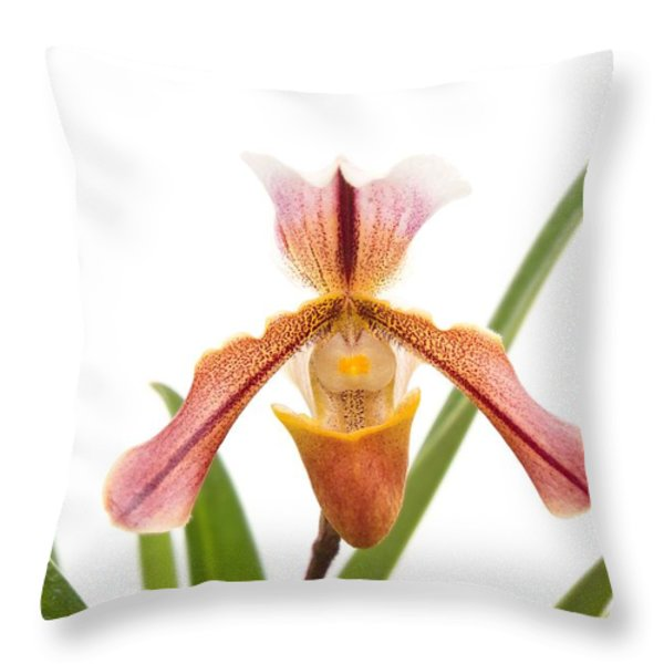 Orchid - Will The Slipper Fit  Throw Pillow by Mike Savad