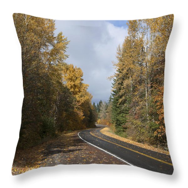 Oregon Autumn Highway Throw Pillow by Peter French