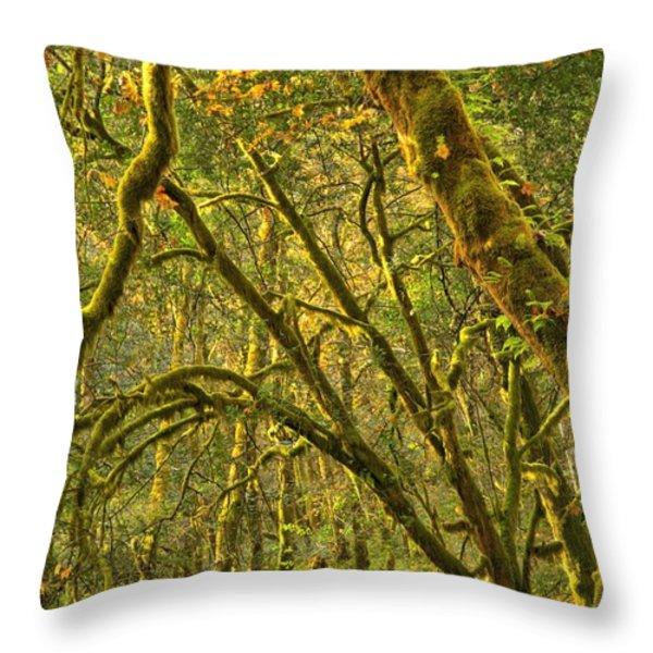 Oregon Rainforest Portrait Throw Pillow by Adam Jewell