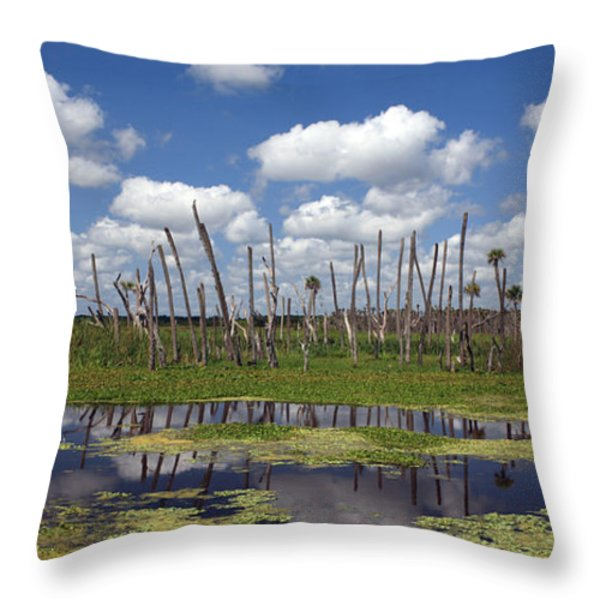 Orlando Wetlands Cloudscape Throw Pillow by Mike Reid