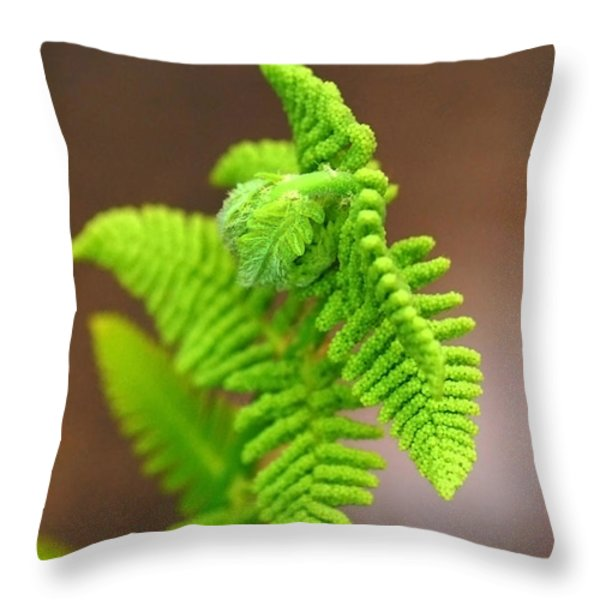 Ostrich Fern Throw Pillow by Christina Rollo