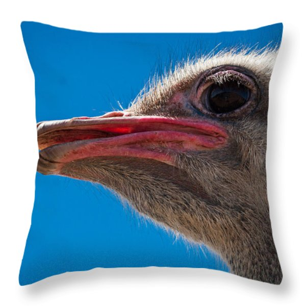 Ostrich Profile Throw Pillow by Jean Noren