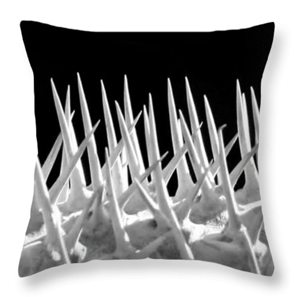 Ouch Throw Pillow by Sabrina L Ryan