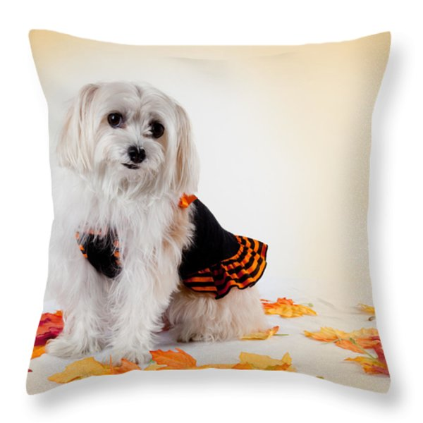 Our Best Friend Throw Pillow by Michelle Wiarda