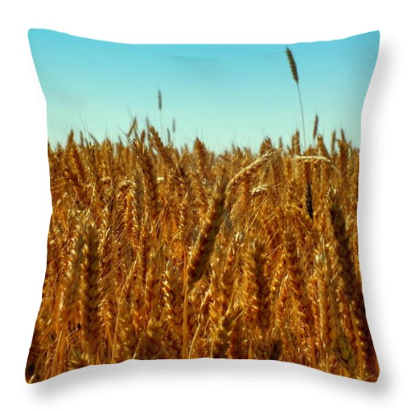 Our Daily Bread Throw Pillow by Karen Wiles