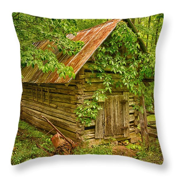 Out Back Throw Pillow by Priscilla Burgers