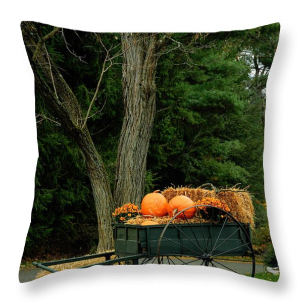 Outdoor Fall Halloween Decorations Throw Pillow by Amy Cicconi