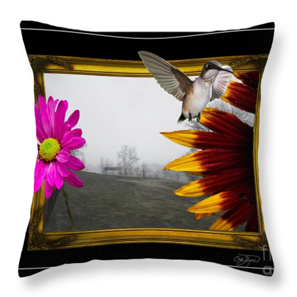 Outside The Box Throw Pillow by Cris Hayes