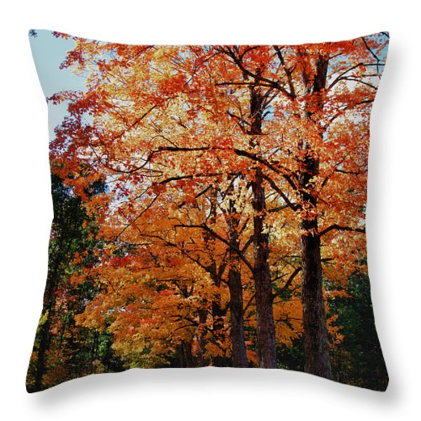 Over the hill and through the trees Throw Pillow by Jeff Folger
