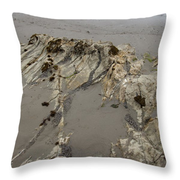 Overtaken Throw Pillow by Amanda Barcon