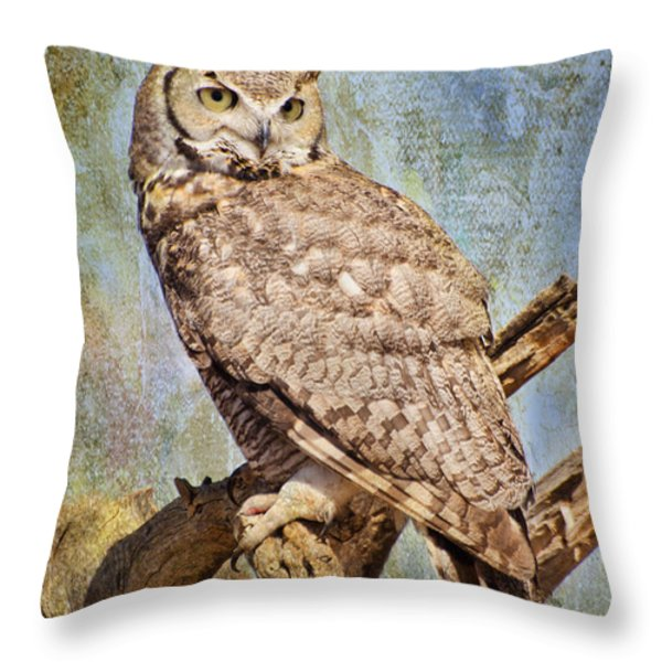 Owl On A Tree Throw Pillow by Barbara Manis