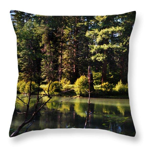 Oxbow Triptych Throw Pillow by Peter Piatt