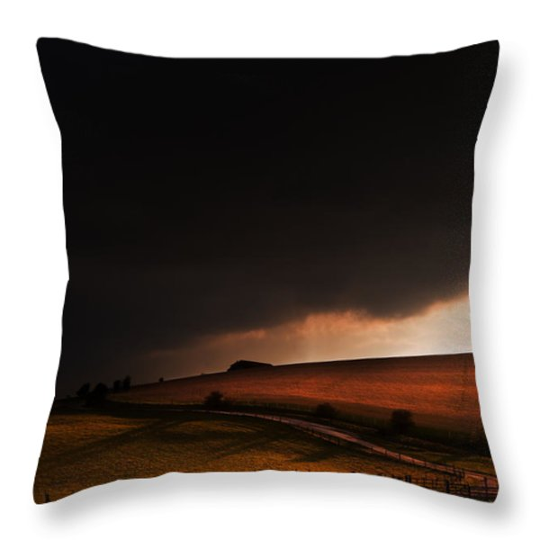 Oz in Kansas Throw Pillow by Matthew Gibson