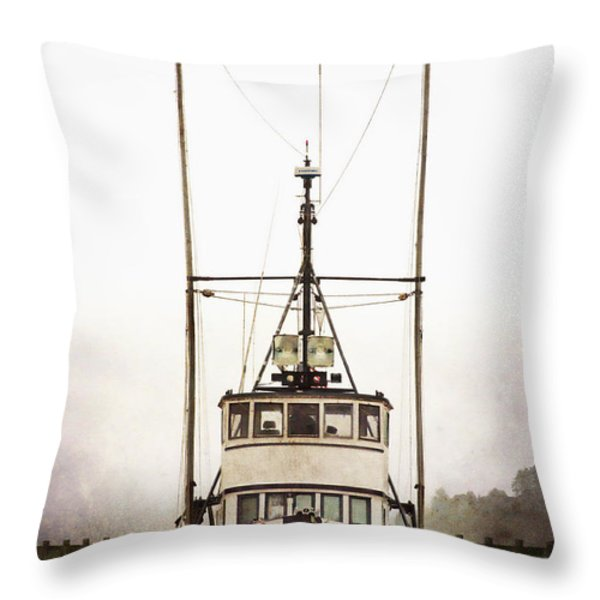 Pacific Northwest Morning Throw Pillow by Carol Leigh