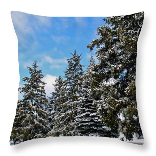 Painted Pines Throw Pillow by Frozen in Time Fine Art Photography