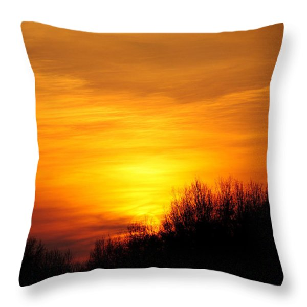 Painted Sky Throw Pillow by Frozen in Time Fine Art Photography