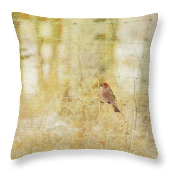Painterly Image Of A Male Pine Grosbeak Throw Pillow by Roberta Murray