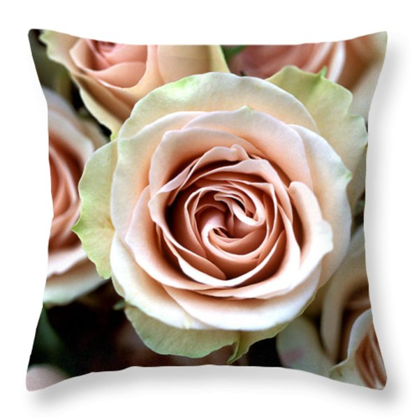Pale Pink Roses Throw Pillow by Kathy Yates