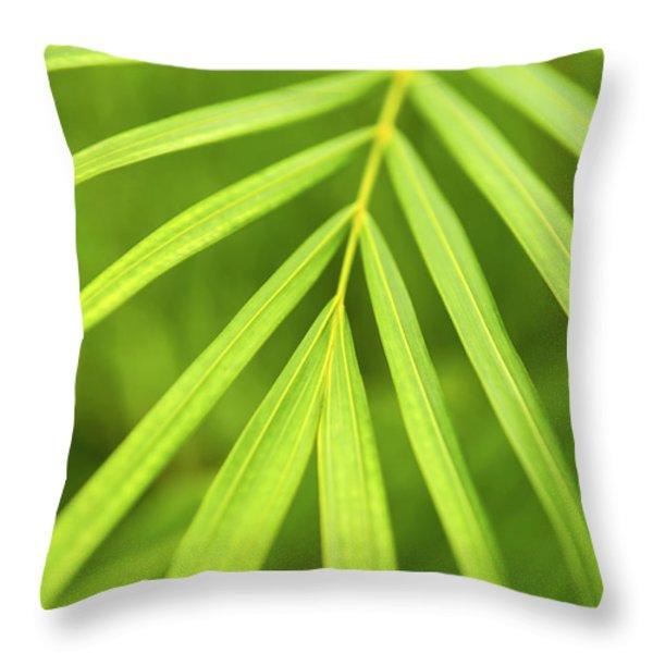 Palm Tree Leaf Throw Pillow by Elena Elisseeva