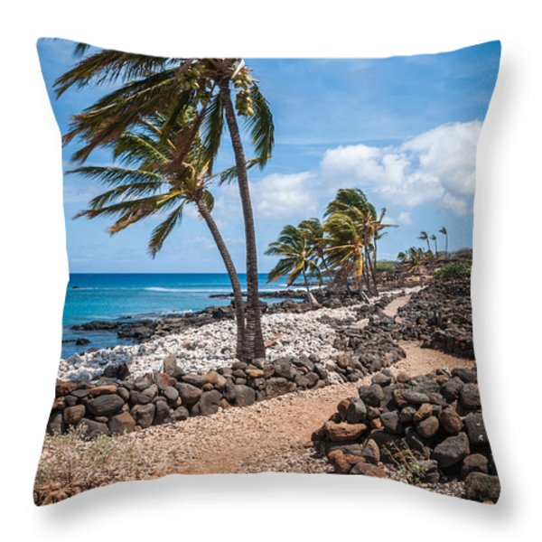Palms At Lapakahi Throw Pillow by Al Andersen