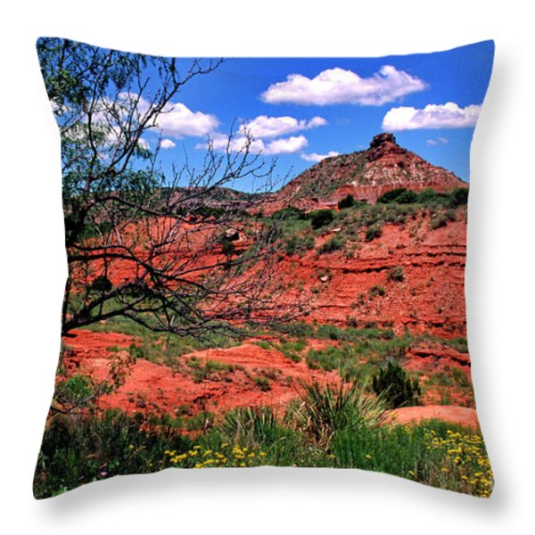 Palo Duro Canyon State Park Throw Pillow by Thomas R Fletcher