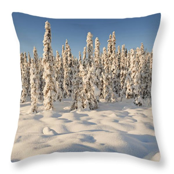 Panoramic View Of Snow-covered Spruce Throw Pillow by Ray Bulson