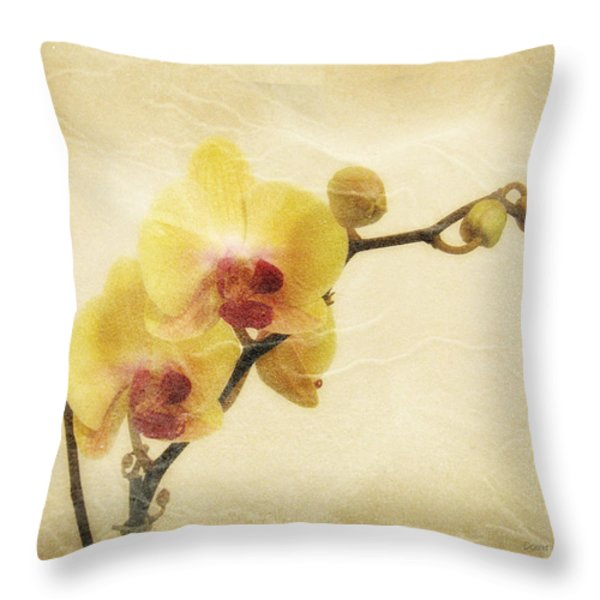 Paper Flowers Throw Pillow by Donna Blackhall