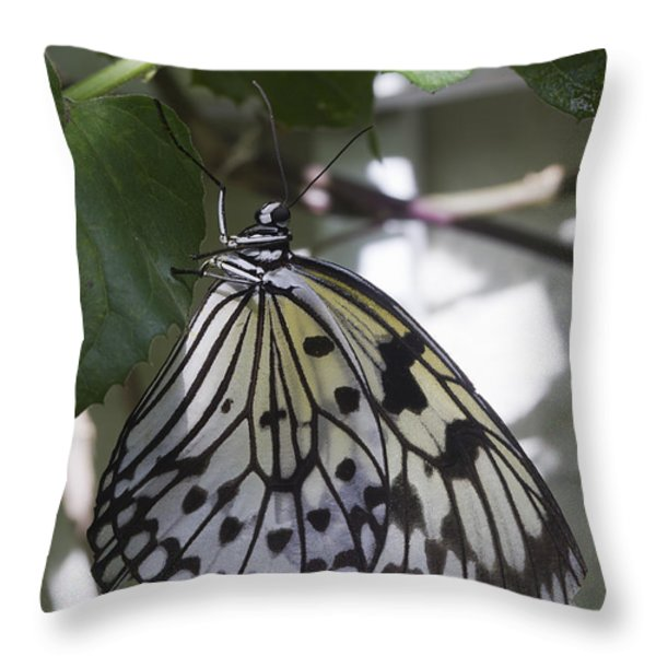 Paper Kite Throw Pillow by Anne Rodkin
