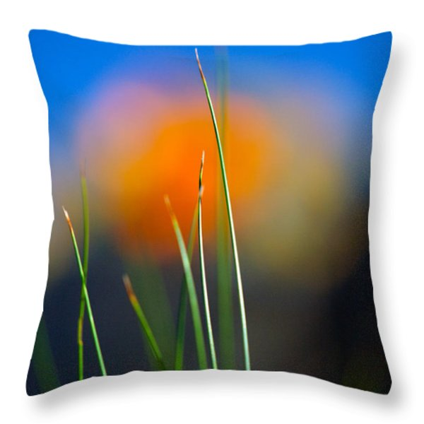 Papyrus Throw Pillow by Joe Schofield