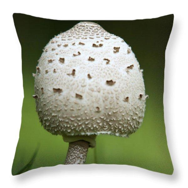 Parasol Mushroom Throw Pillow by Christina Rollo