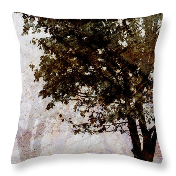Park Benches Throw Pillow by Carol Leigh