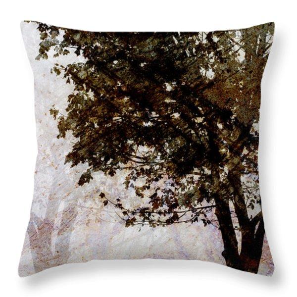 Park Benches Throw Pillow by Carol Leigh