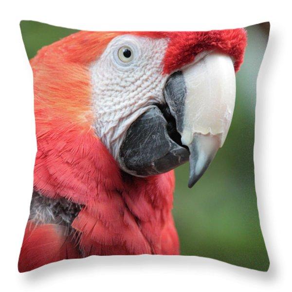 Parrot Profile Throw Pillow by Carol Groenen