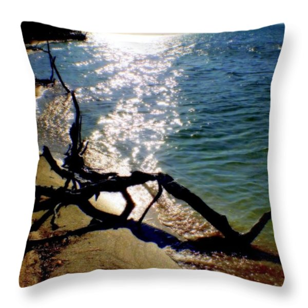 Passing Of Time Throw Pillow by Karen Wiles