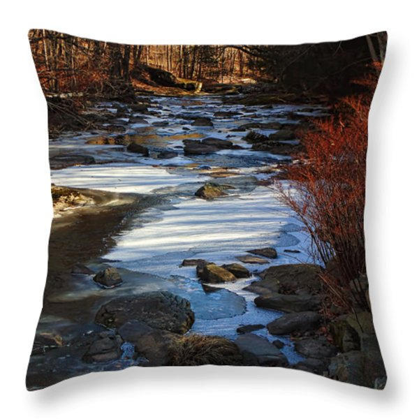 Passion For The Stream Throw Pillow by Pamela Phelps