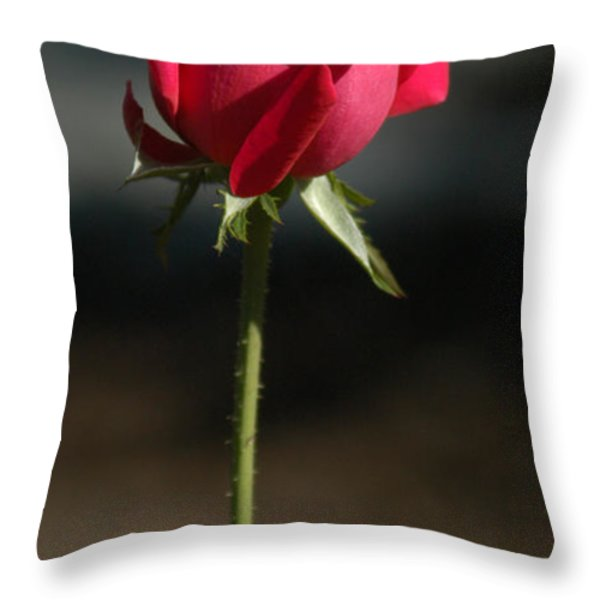 Passionate Lady Throw Pillow by Penny Lisowski