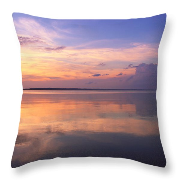 Pastel Majesty Throw Pillow by Rachel Cohen