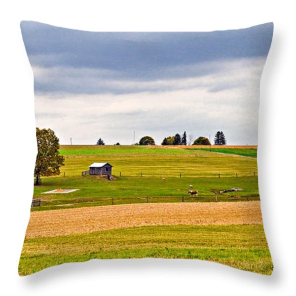 Pastoral Pennsylvania Throw Pillow by Steve Harrington