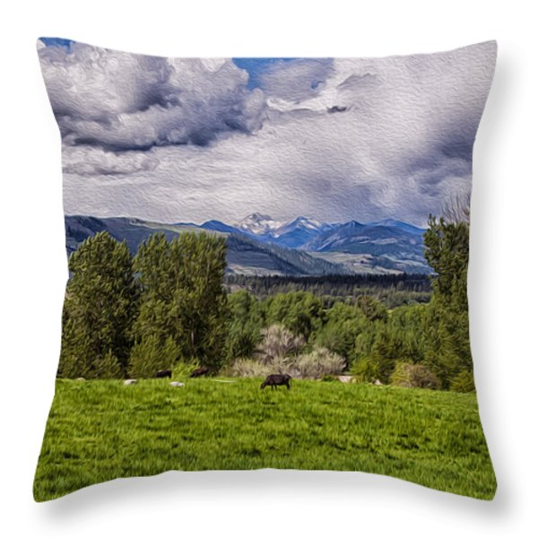 Pastures And Clouds  Throw Pillow by Omaste Witkowski