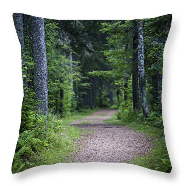 Path in dark forest Throw Pillow by Elena Elisseeva