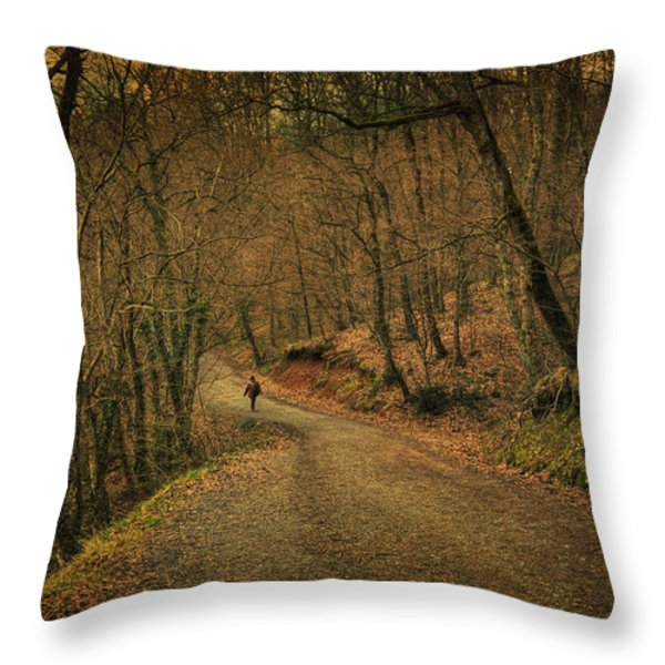 Path Throw Pillow by Taylan Soyturk
