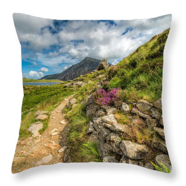 Path to Lake Idwal Throw Pillow by Adrian Evans