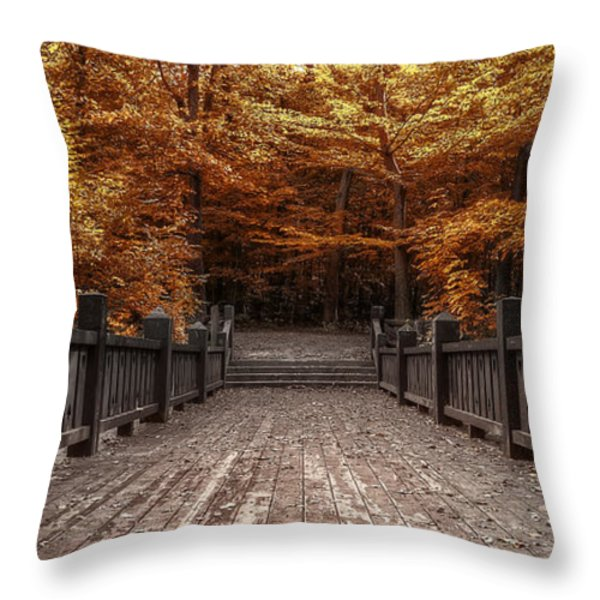 Path to the Wild Wood Throw Pillow by Scott Norris