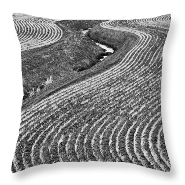 Patterns 1 Throw Pillow by Don Hall